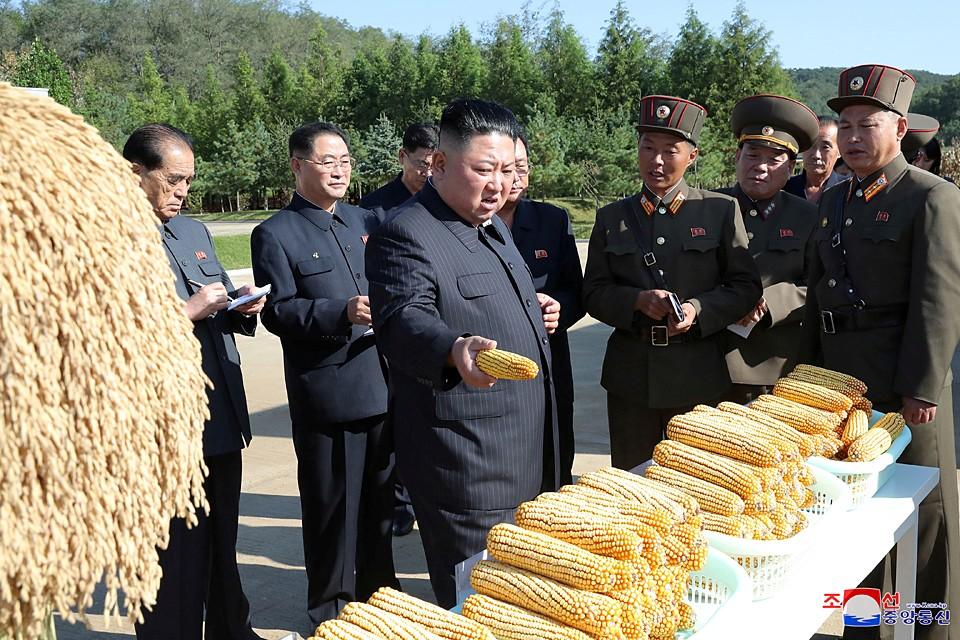 Лидер КНДР посетил ферму, расположенную на территории воинской части. Ким Чен Ын не появлялся на публике почти месяц