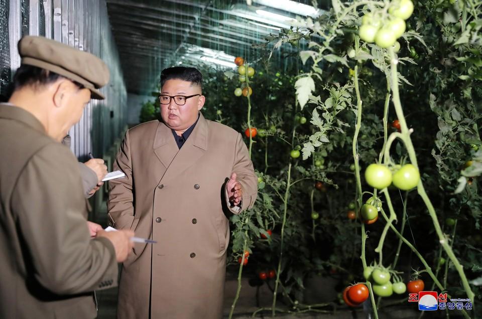 Вождь КНДР Ким Чен Ын ознакомился с тепличным хозяйством в городе Кэсон.