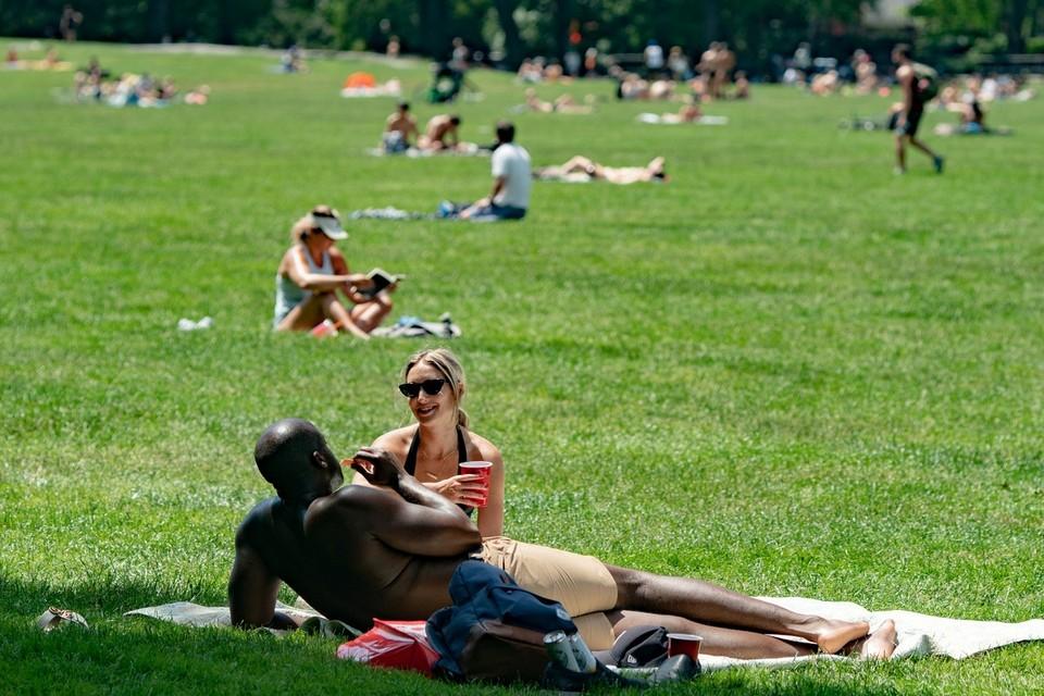 Жители Нью-Йорка высыпали на лужайки Центрального парка в погожий день.