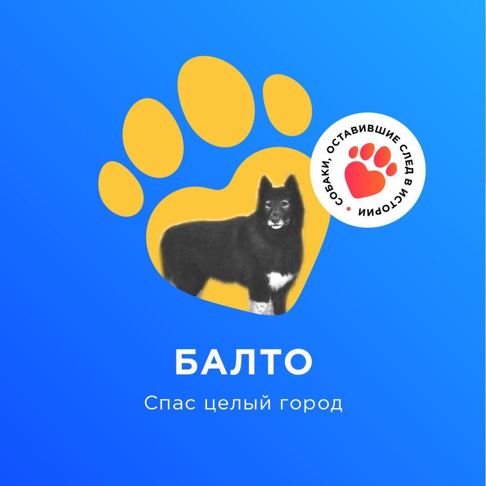 Балто: спас целый город