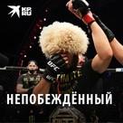Хабиб Нурмагомедов: непобежденный