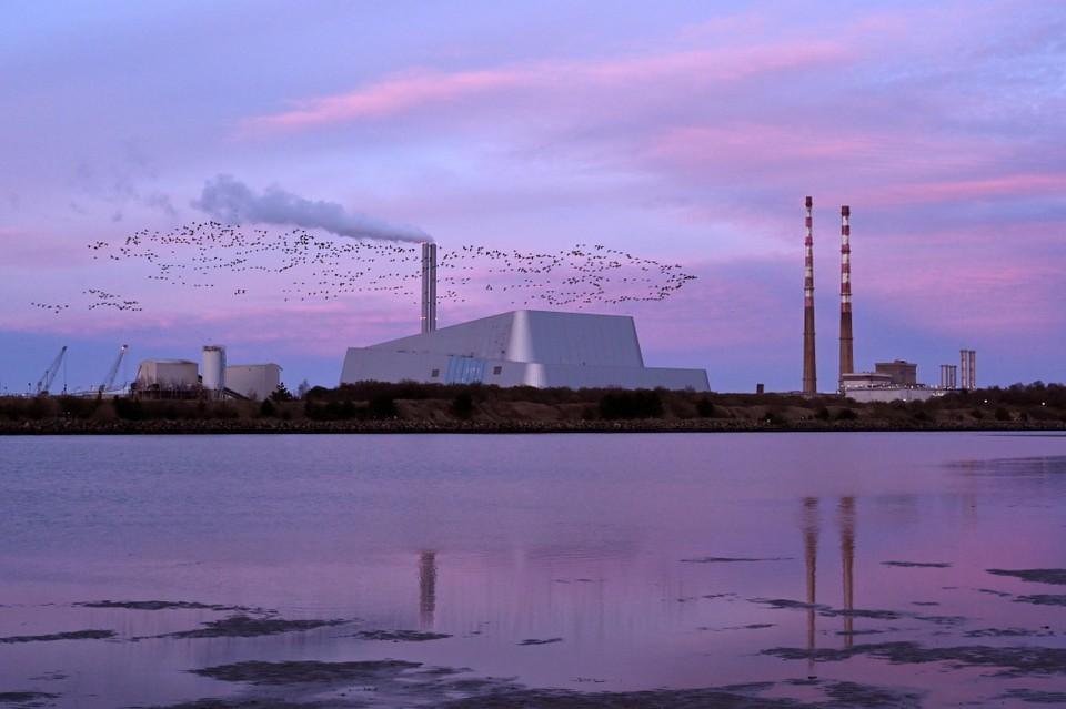 Стаи казарок летят мимо труб электростанции на полуострове Пулберг, чтобы обосноваться на ночевку на пляже Сандимаунт-Стрэнд в Дублине