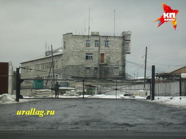 Дмитрия Лошагина этапировали в колонию № 54 в Новой Ляле Фото: urallag.ru