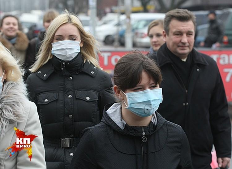 Случаев свиного гриппа все больше, но страшной эпидемии в России не будет