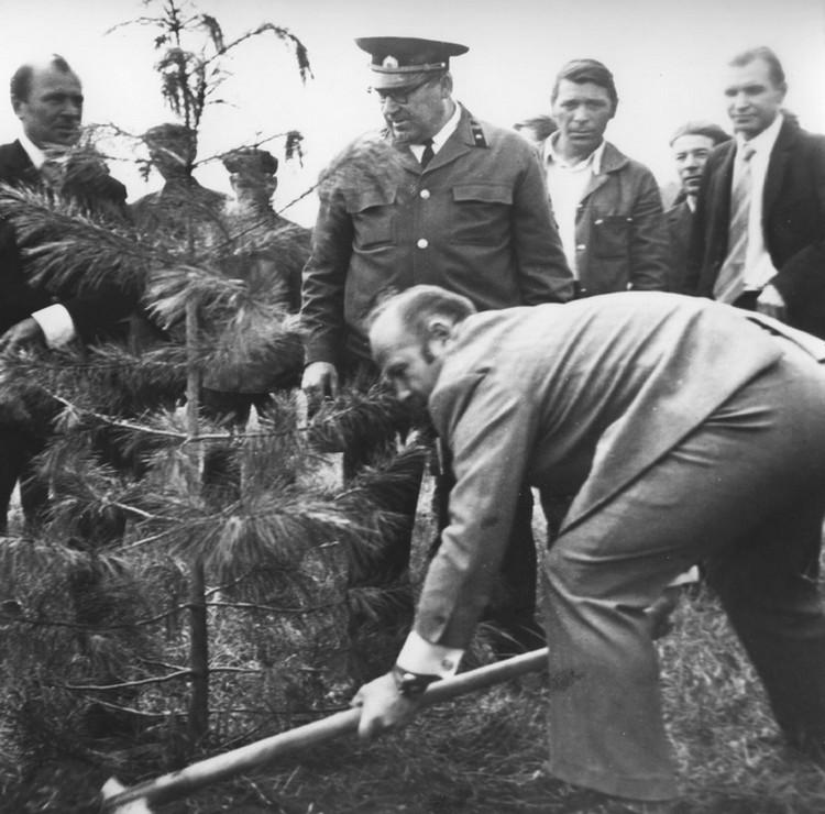 Алексей Леонов приехал к себе на Родину  в Листвянку и посадил в парке именное дерево. Фото: архив департамента лесного комплекса Кемеровской области