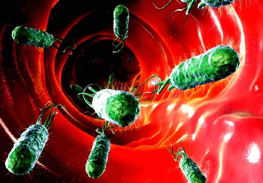 трансляция плохие бактерии картинки результате взрыва