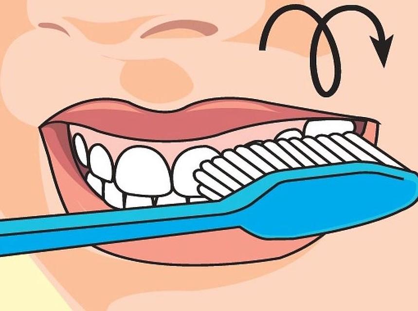 метод чистки зубов в картинках практично