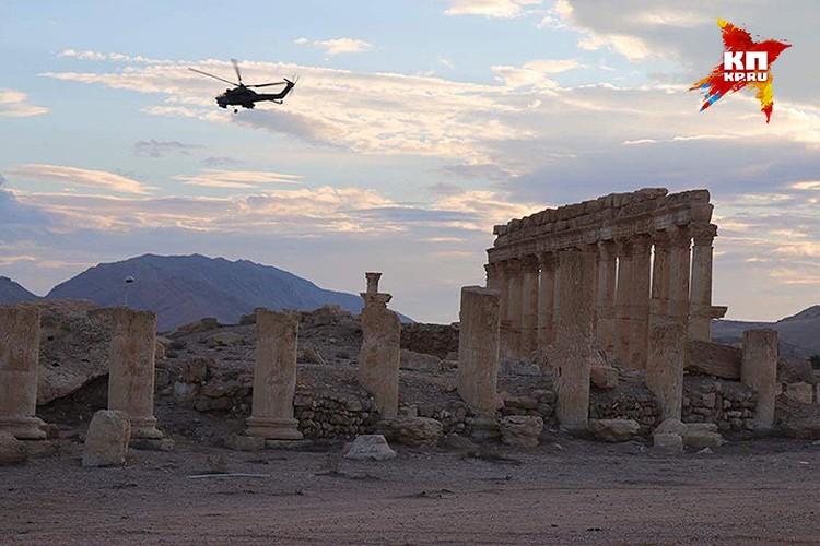 В мартовском освобождении Пальмиры значительную помощь силам Сирийской арабской армии оказали ВКС России.