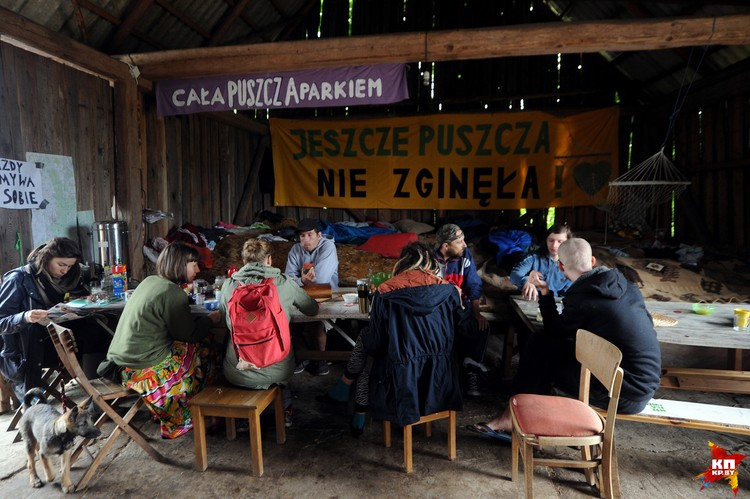 Поддержать защитников пущи приезжают люди из других городов Польши, а также из Румынии, Чехии.