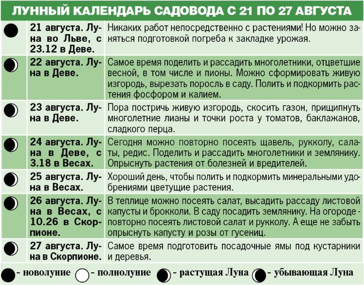 Лунный календарь садовода с 21 по 27 августа