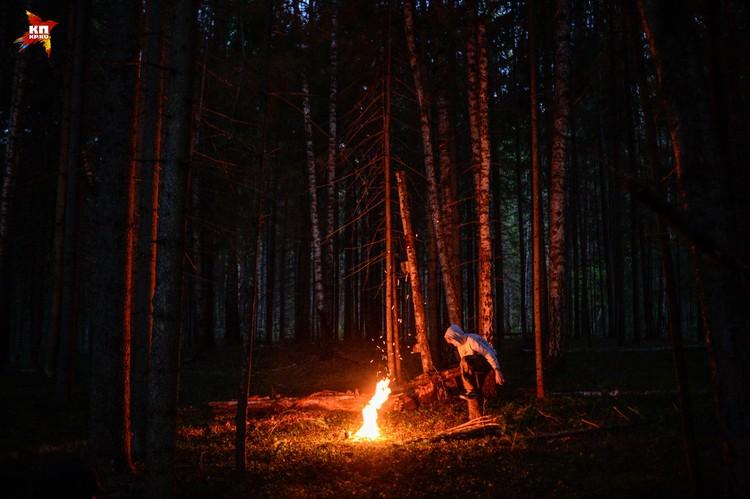 Полянка в лесу в районе Селижарово