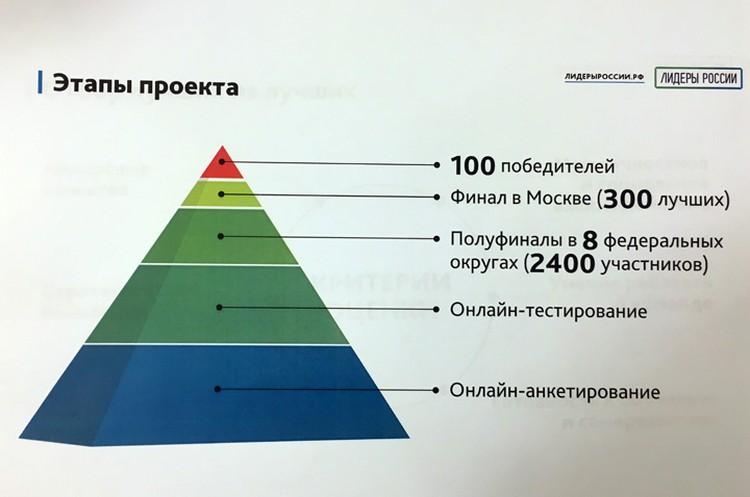 Проект будет состоять из пяти этапов.