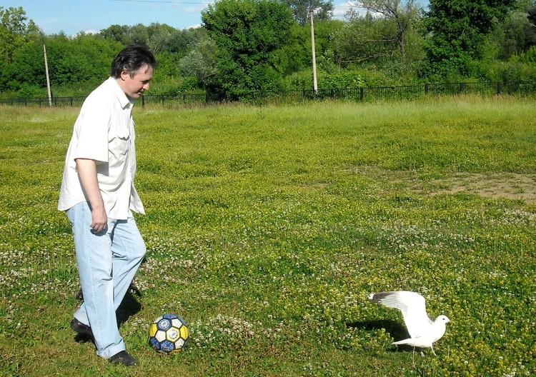 Чайка Чекушка обожает новые ощущения и гулять. Фото: из архива Анастасии Каменской