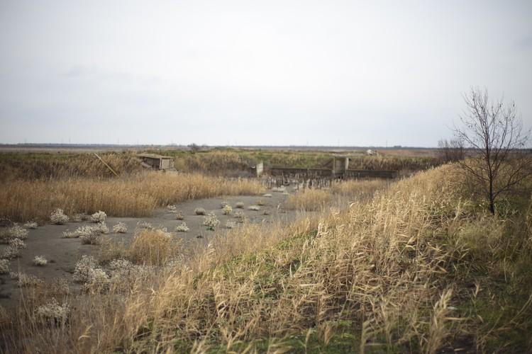 Воды в прудах не осталось.