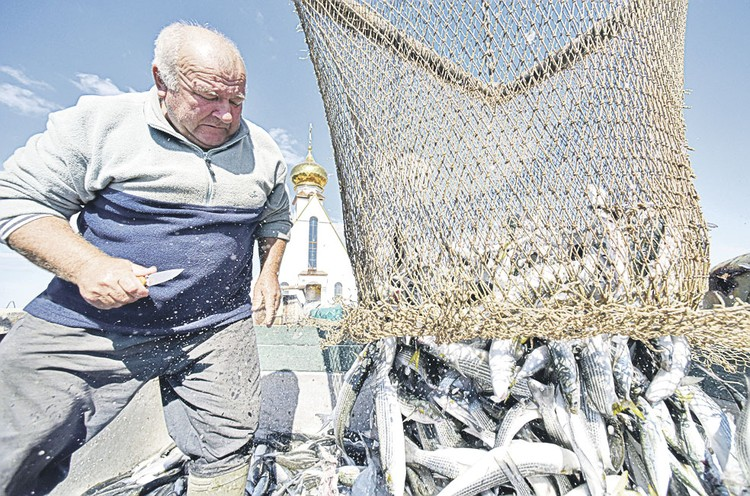 Рыбаки на косяк с одним ножом ходят. Фото: Александр ПОЛЕГЕНЬКО/РИА-Новости