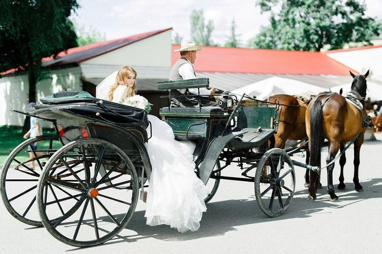 Сегодня невесты предпочитают карету с двойкой лошадей вместо лимузинов.