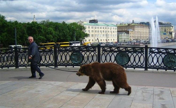 Наконец-то в русских городах привычная атмосфера