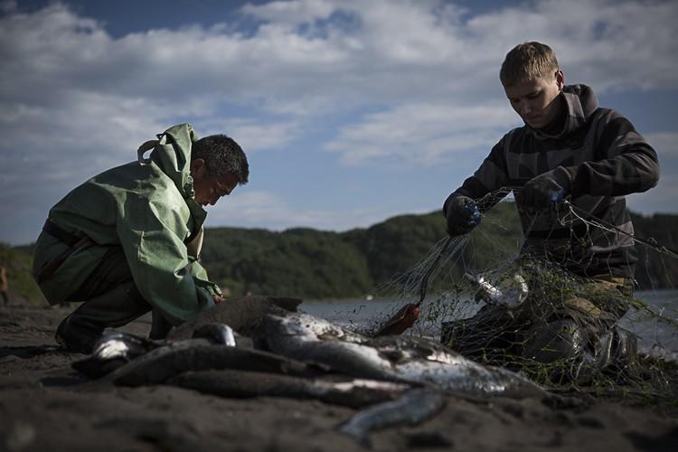 С теми, кто привык ловить рыбу с помощью сетей в правительстве решили не церемониться