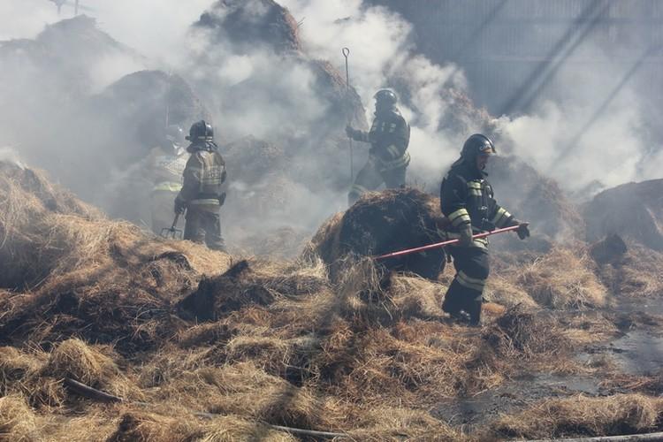 Пожарные дополнительно пролили сено