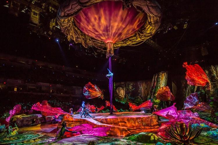 Арена цирка превратилась в далекую Пандору. Фото: Пресс-служба Cirque du Soleil