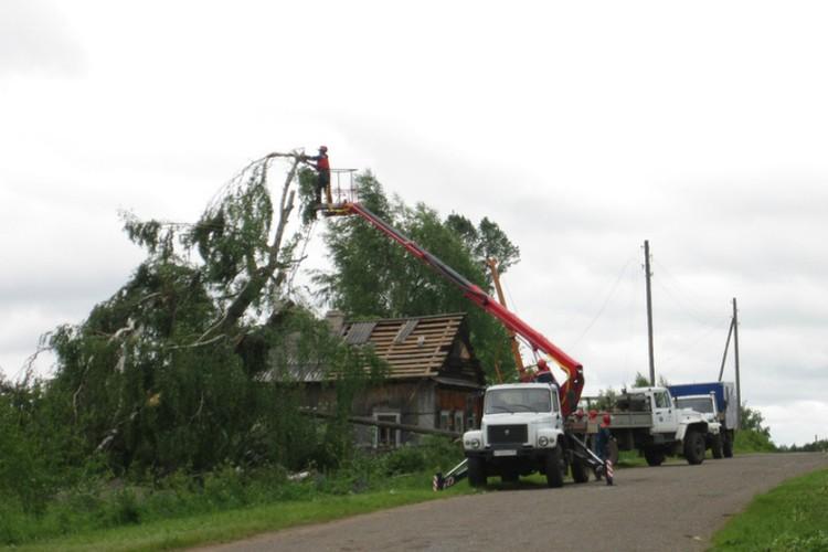 Из-за гроз, шквалов многие деревья были ломались и падали. Фото: Владимир КОТЕЛЬНИКОВ