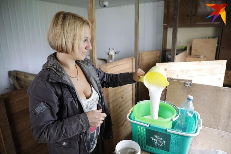 Александра научилась доить коз и делать сыр из молока.