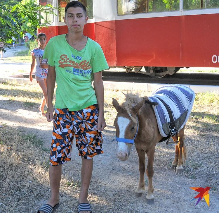 На этой лошадке пони юный житель Евпатории возит всех желающих по кругу. Пони хоть и маленькая, но съедает по три охапки сена в день. А овес-то нынче дорог – не укупишь!