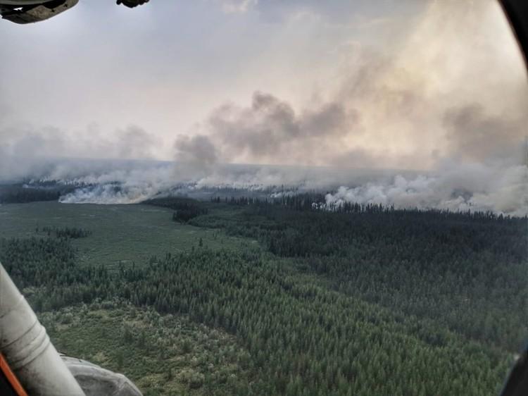 Лесной пожар в Республике Саха.