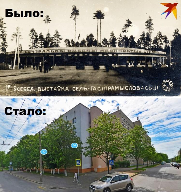 Было: одна из двух столовых, находившихся на выставке. Стало: современная улица Кедышко. Фото предоставлено Антоном Денисовым и Яндекс.Панорамы.