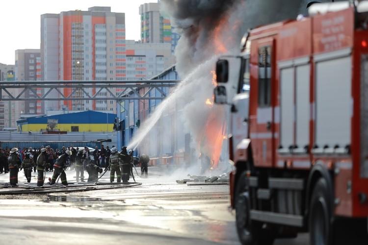 Пожарные не дали огню перекинуться на павильоны