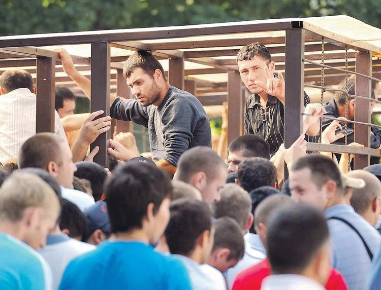 Сколько мигрантов живет в Москве с липовыми документами, которые у них на родине штампуют за несколько тысяч рублей, - не знает никто.