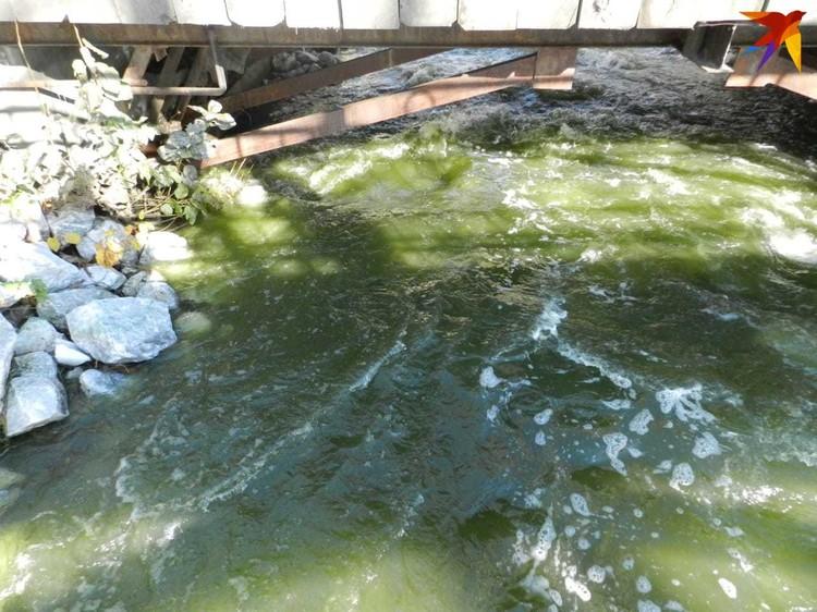 """Такая вода идет на водоснабжение Нижнего Тагила. Фото: читательница """"КП"""""""