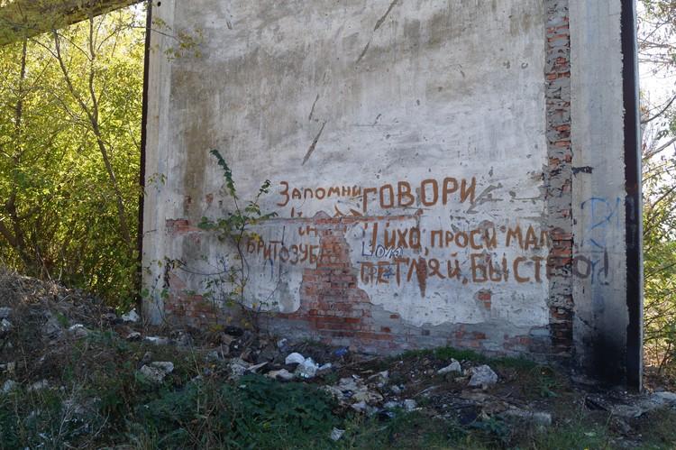 Пейзажи рядом с домом Рослякова нагоняют грусть