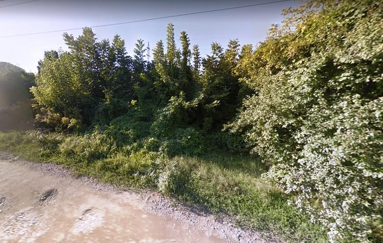 До ближайшего дома - около 100 метров.