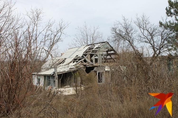 Большая часть домов в Петровском - в разрушенном состоянии