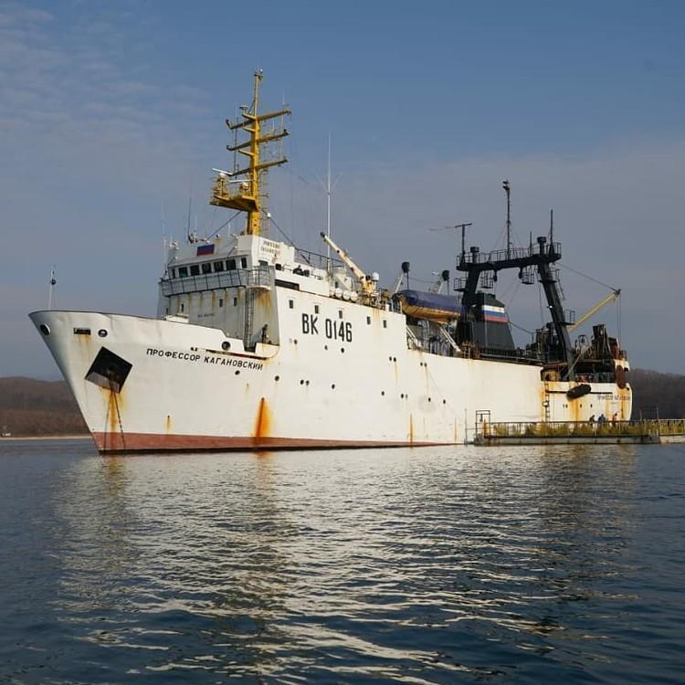 К судну «Профессор Кагановский» лодкой буксировался понтон с вольерами