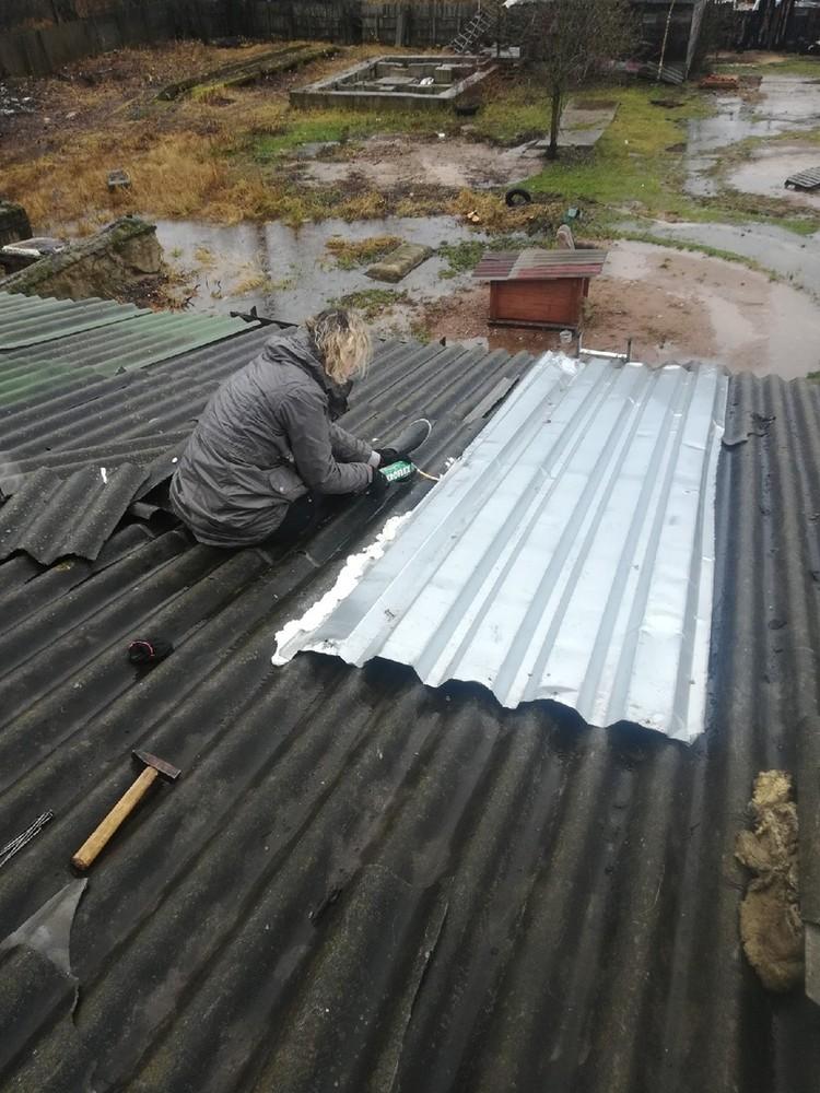 """Фото: """"Зоозащита"""". Крышу делали сами, женскими руками."""
