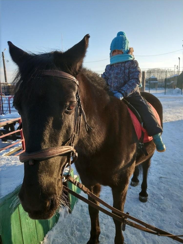 """Каждые год регулярные занятия иппотерапией посещают более 600 человек Фото: центр """"Добрая лошадка"""""""