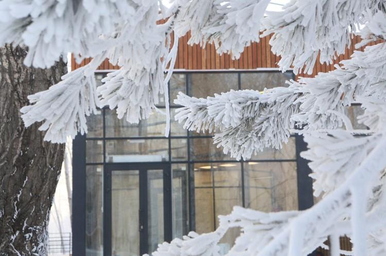Идею открыть на Татышеве ресторан приняли не все. Нашлись как сторонники, так и противники. Фото: пресс-служба администрации Красноярска.