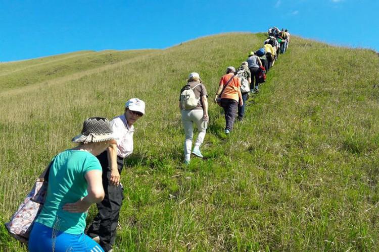 На полуострове создали два маршрута разной протяженности. ФОТО: Лига ходьбы «Женшень»