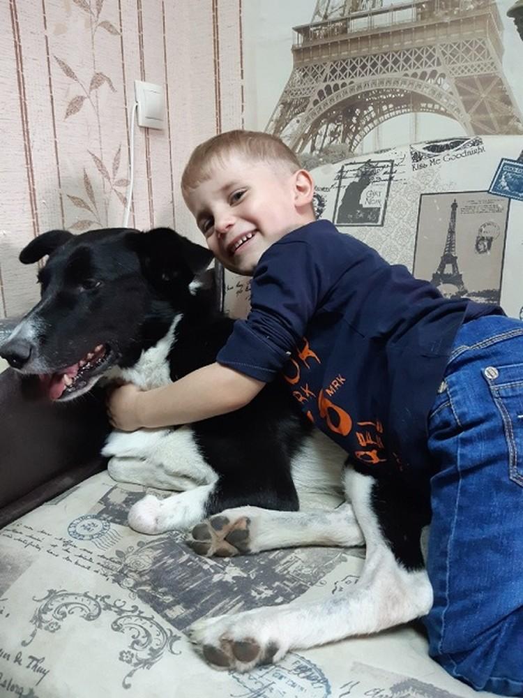 Бантик стал любимцем детей. Фото: Анастасия Минченко