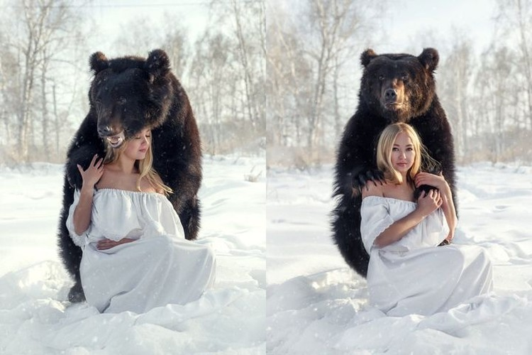 Ради вкусняшки медведь встал на две лапы. Фото: Ольга Бурмистрова