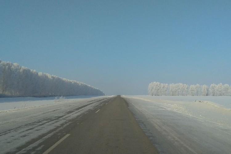 Дорога между Кытманово и Заринском.