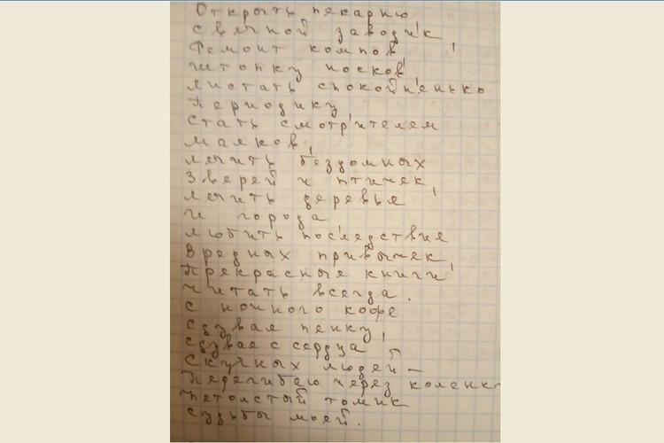 Образец почерка Натальи Николенковой
