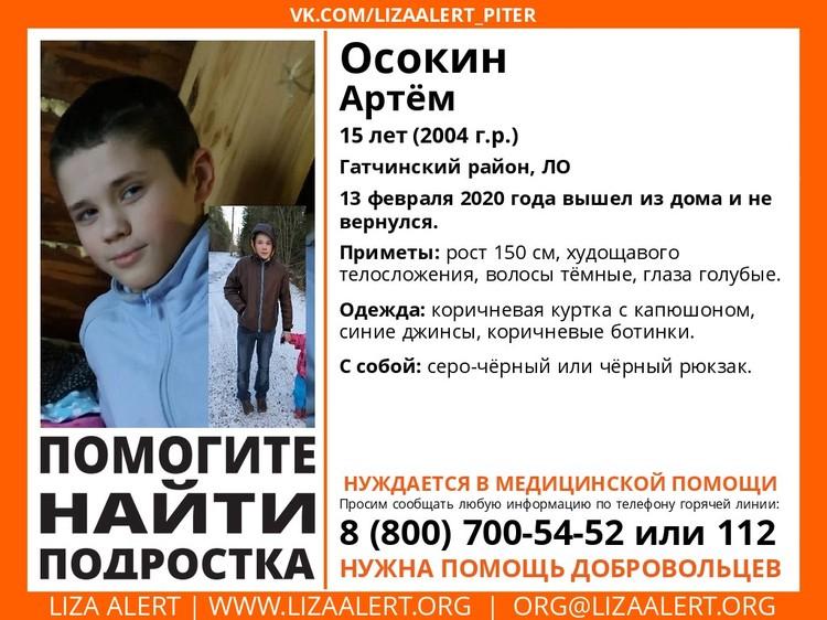 Мальчика уже ищут волонтеры-поисковики. Фото: lizaalert.org