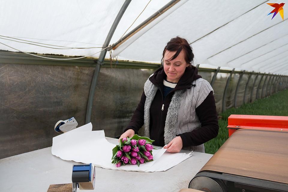 Оптовикам хозяйство продает готовые букеты по 15 тюльпанов в каждом. Фото: Надежда ПАВЛЮЧИК