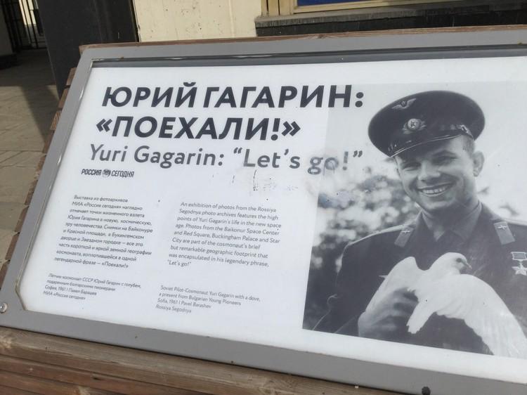 Знаменитый фотопортрет Гагарина за авторством Павла Барашева.