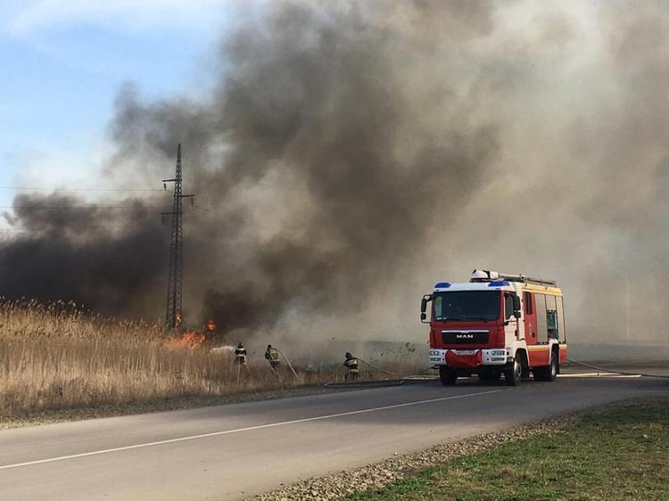 Сообщение о возгорании появилось около обеда. Фото: ГУ МЧС России по РО.