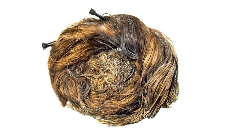 Для затравки Йоркшир выложил странную фотографию, похожую на гнездо хищной птицы. Фото: twitter.com/YorkshireMuseum