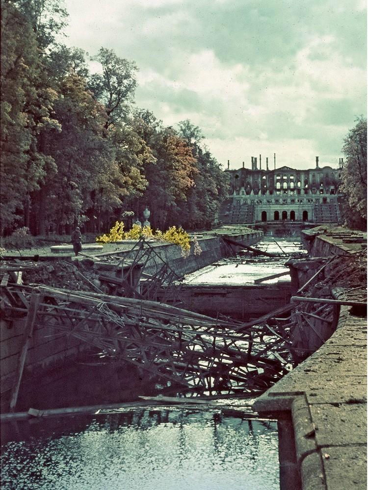 Разрушенный Петергоф. Фото: Фонд культуры Германии